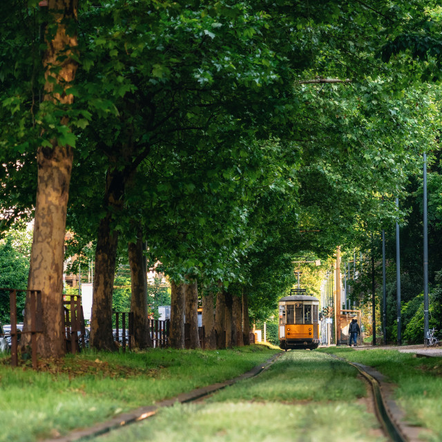 """Old tram goes through green forest in Milan, Italy"" stock image"