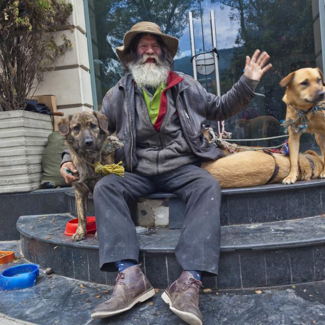 """Homeless dog man"" stock image"