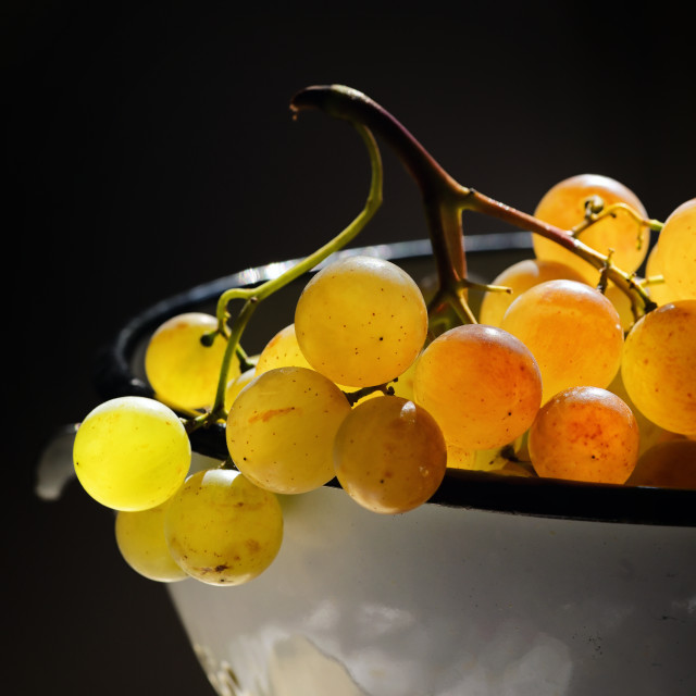 """""""White Grapes In A Colander"""" stock image"""