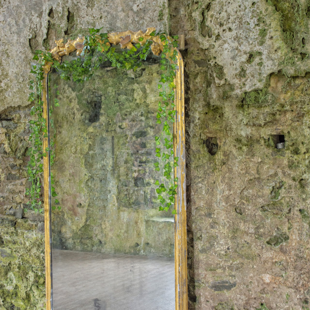 """Mirror inside a medieval castle."" stock image"