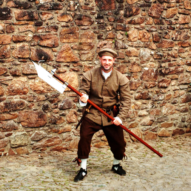 """""""Guarding The Castle"""" stock image"""