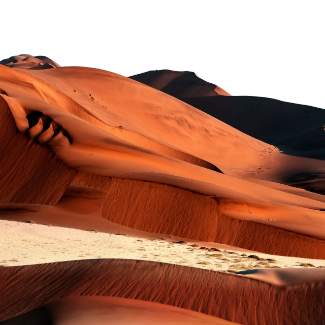 """Namib sand dunes & antelopes"" stock image"