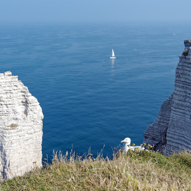"""Etretat cliffs"" stock image"