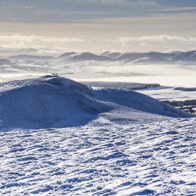 """Winter Snowscape"" stock image"