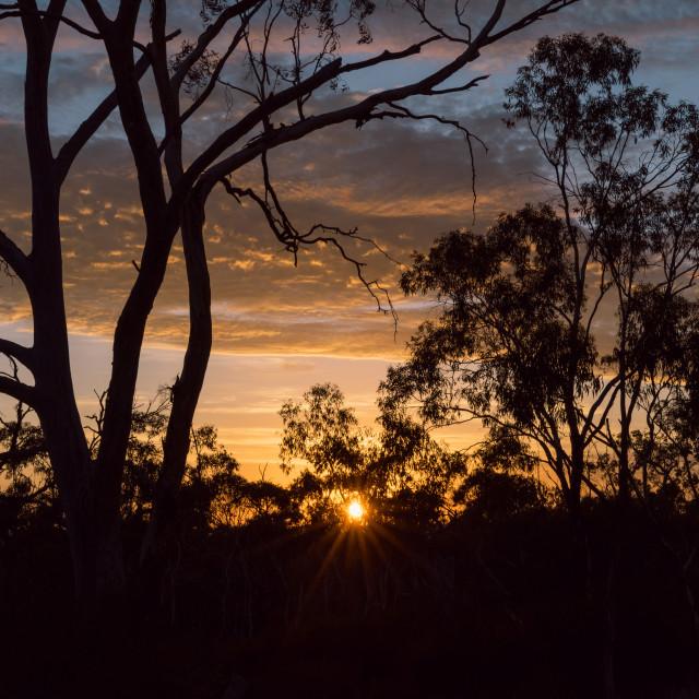"""Sunrise in the Arapiles"" stock image"