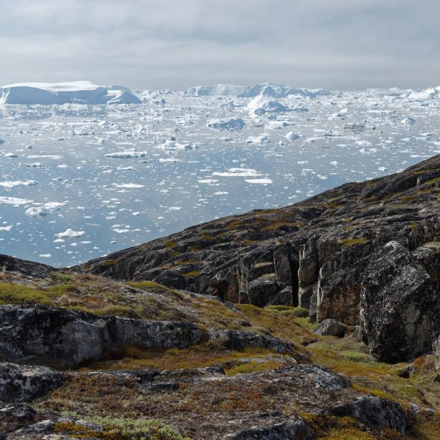 """Ilulissat Ice Fjord"" stock image"