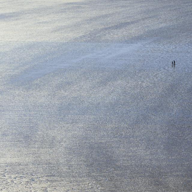 """People on sandy beach"" stock image"