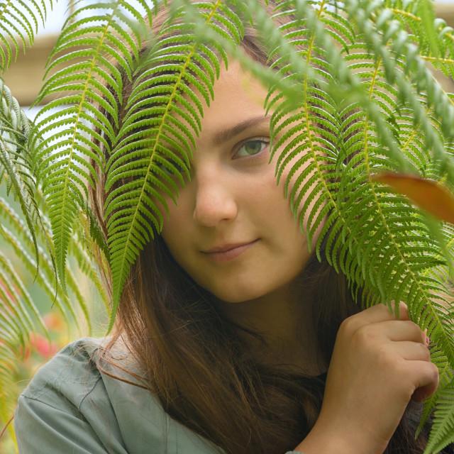 """Teen girl watching through leaves"" stock image"
