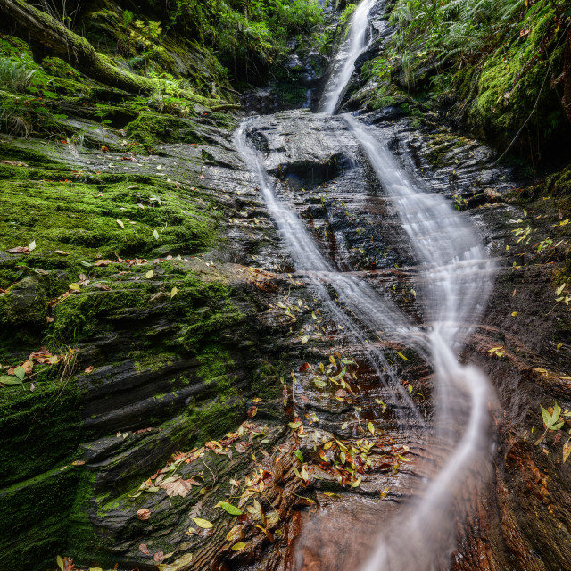"""""""A stream rushes through a reddish Slate Canyon"""" stock image"""