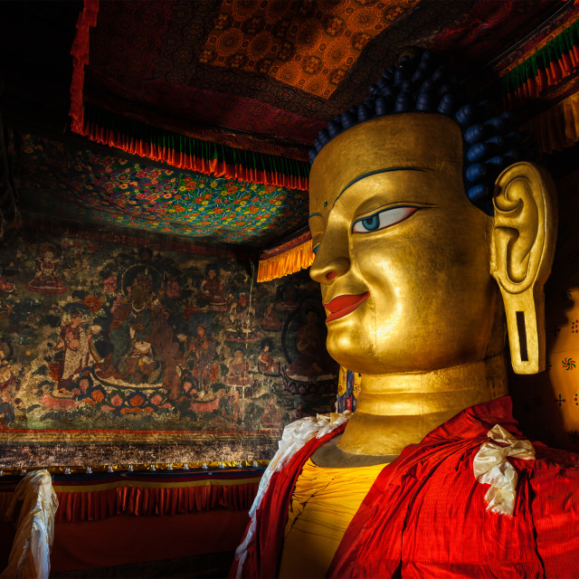 """""""Sakyamuni Buddha statue in Shey gompa, Ladakh"""" stock image"""
