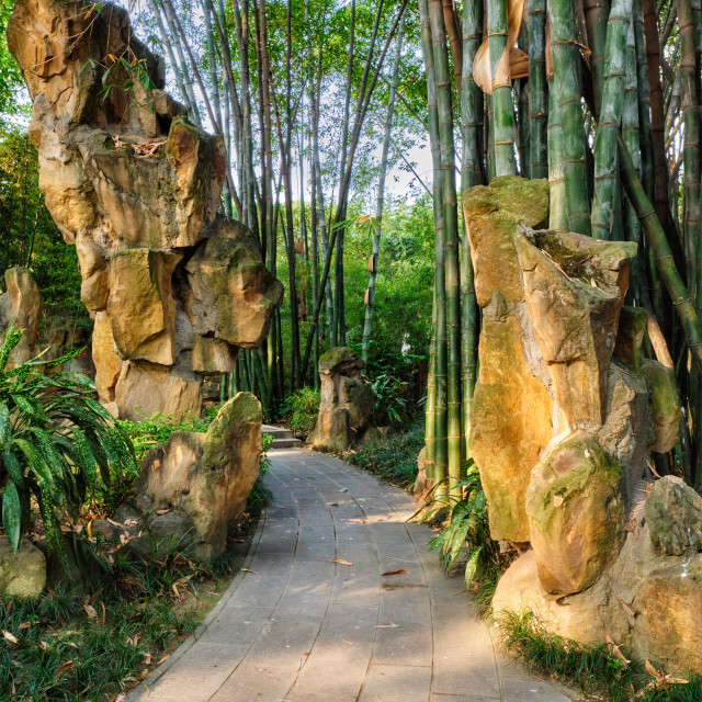"""Park in Chengdu, China"" stock image"