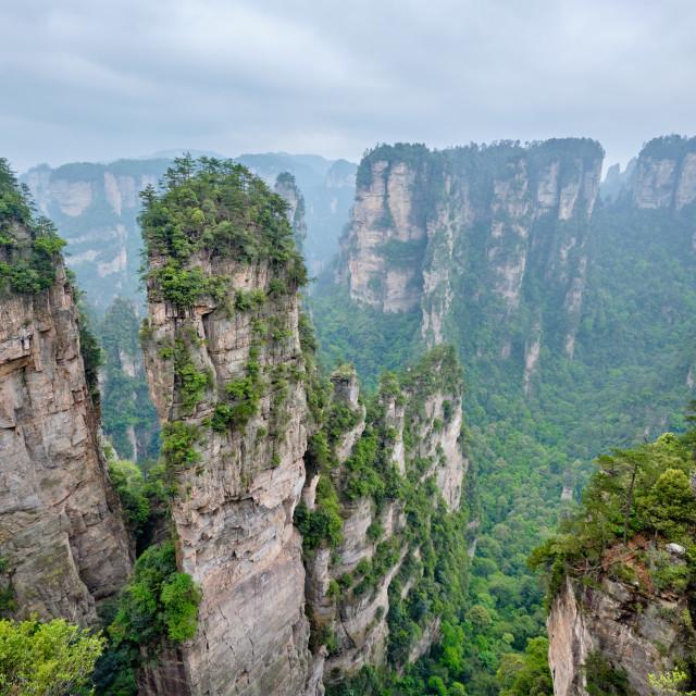 """""""Zhangjiajie mountains, China"""" stock image"""