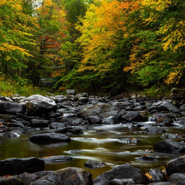 """New England Autumn"" stock image"