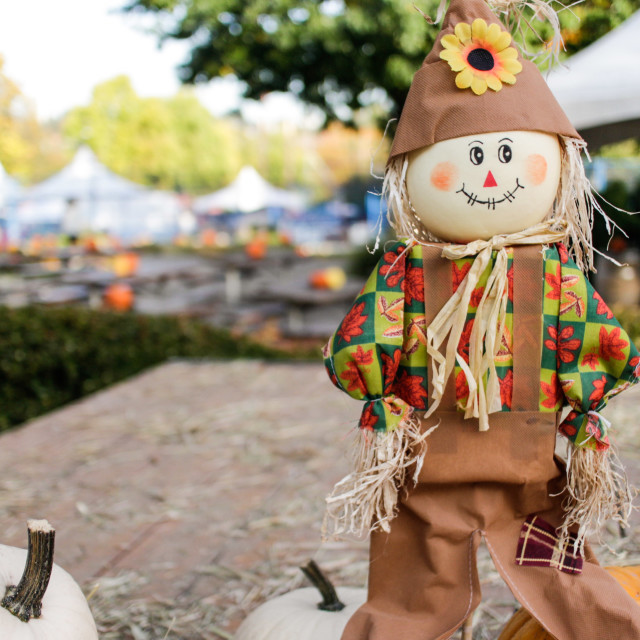 """little scarecrow at country fair"" stock image"