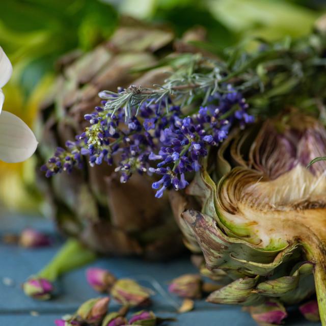 """Vege Stil Life with artichoke"" stock image"
