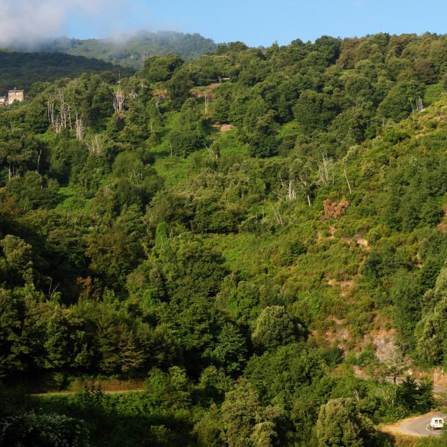 """""""Costa verde road"""" stock image"""