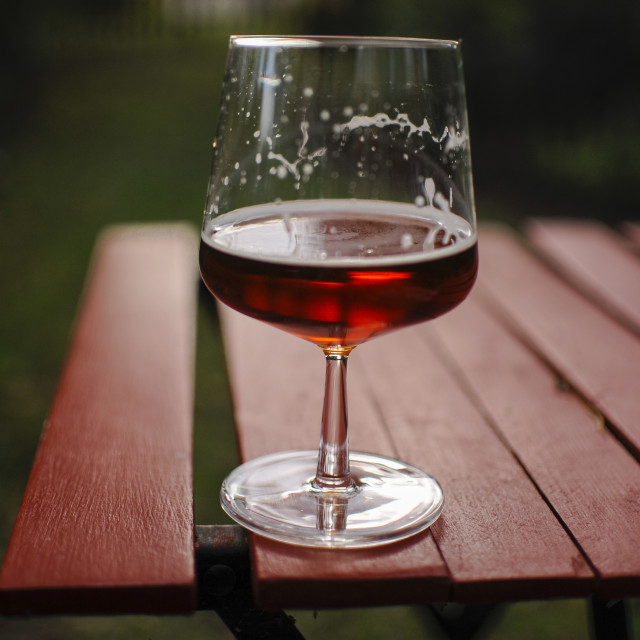 """""""A wasp and a glass of beer"""" stock image"""