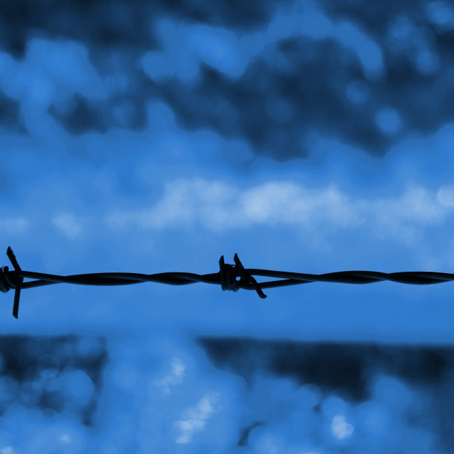 """""""Barbed wire against a blue background"""" stock image"""
