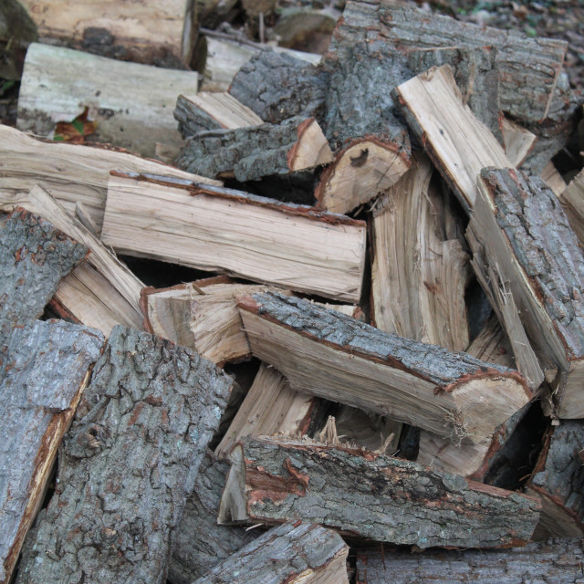 """""""fire wood"""" stock image"""