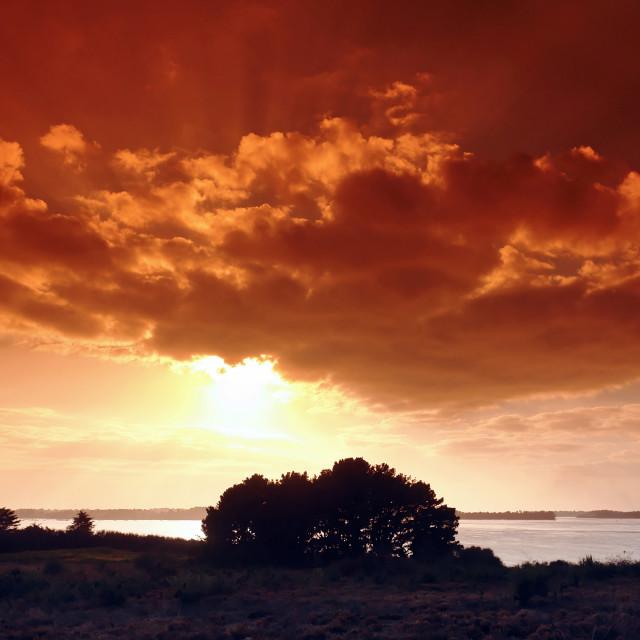 """""""Morbihan gulf"""" stock image"""