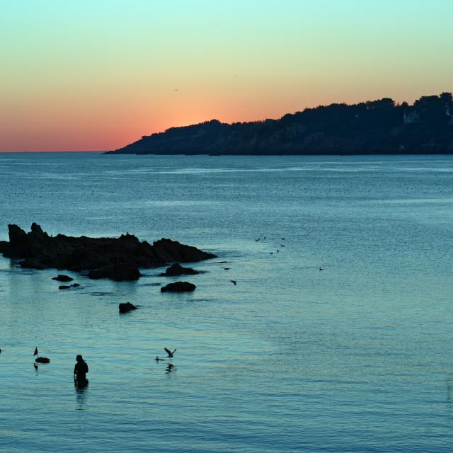 """Kerfany les pins sunset"" stock image"