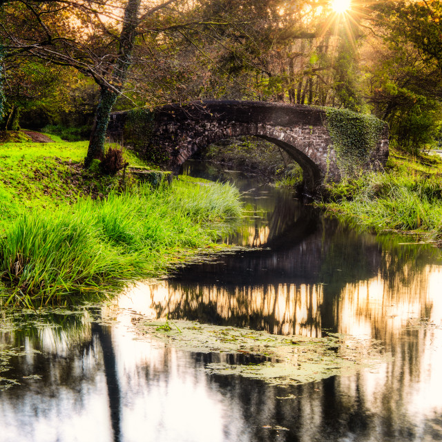 """""""Canal arch"""" stock image"""