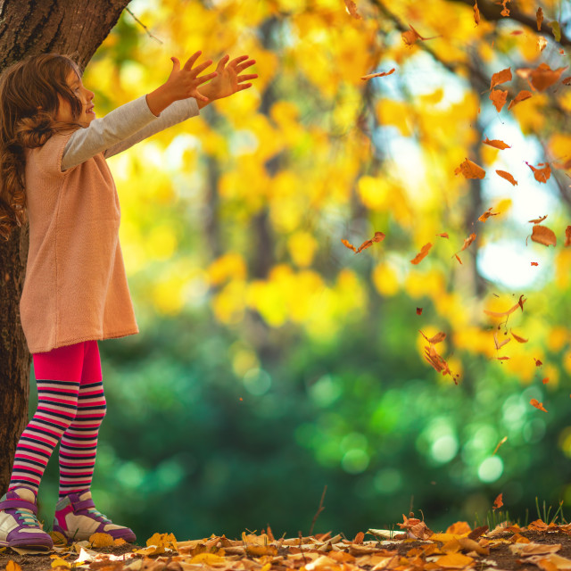 """""""Beautiful little girl in a autumn park"""" stock image"""