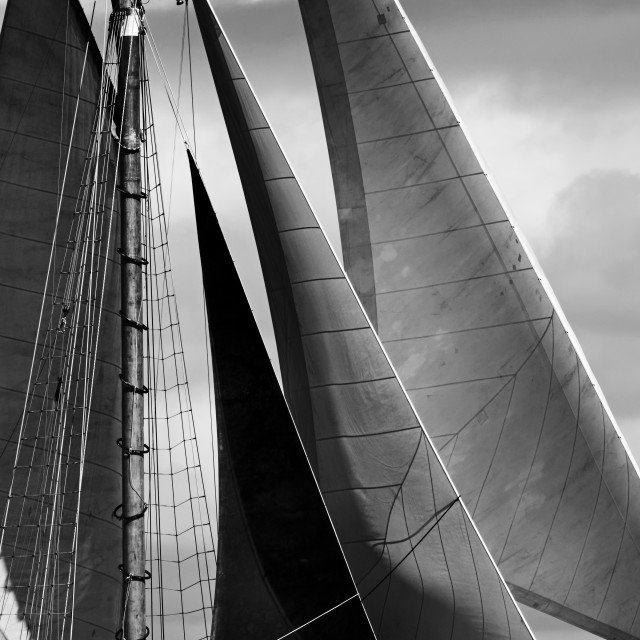 """""""Sea sails"""" stock image"""