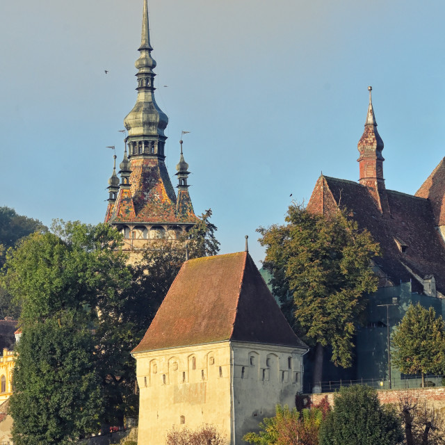 """""""Medieval Saxon Fortress View In Sighisoara"""" stock image"""