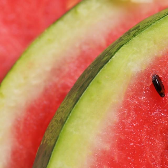 """Fresh ripe watermelon slices"" stock image"