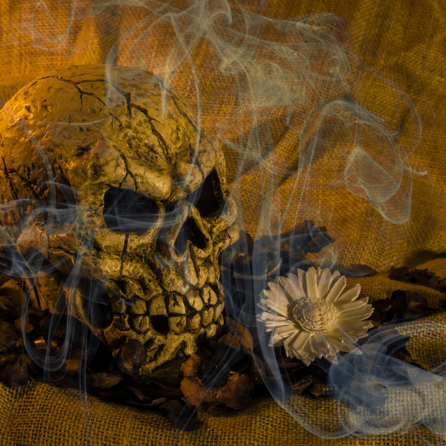 """Skull Smoke And Flowers"" stock image"