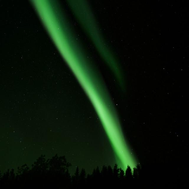 """""""Arctic Aurora 4"""" stock image"""