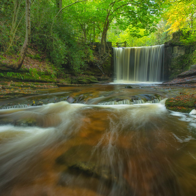 """Autumn Falls"" stock image"