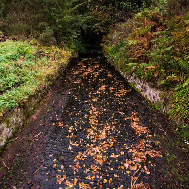 """""""The overspill channel from a weir"""" stock image"""