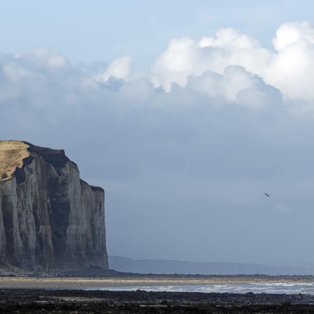 """""""Criel sur mer"""" stock image"""