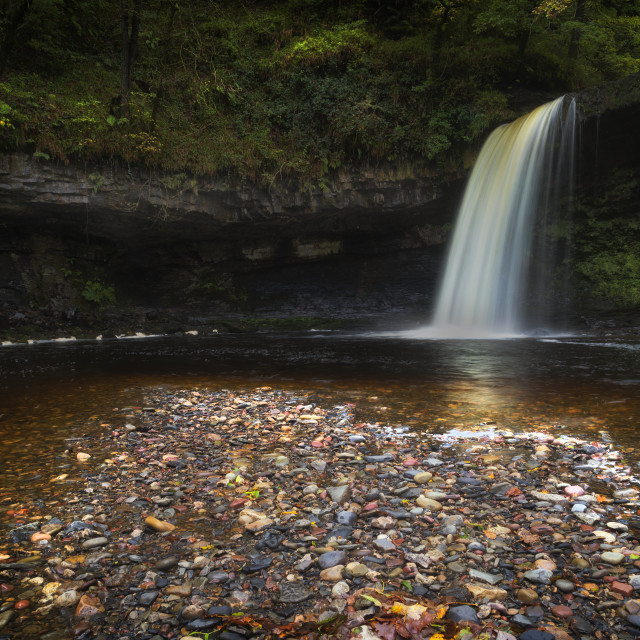 """Sgwd Gwladus waterfall after the rain"" stock image"