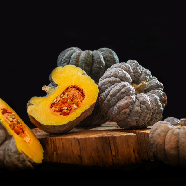 """pumpkin stilllife photography"" stock image"