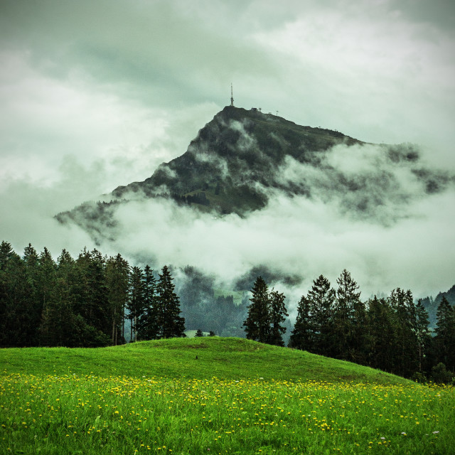 """Kitzbuhelerhorn - Green Filter"" stock image"