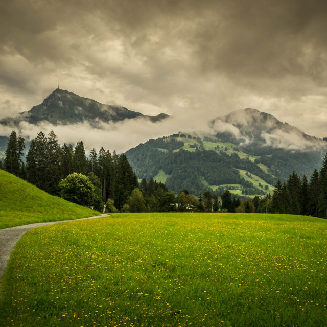 """Road to Kitzbuhelerhorn"" stock image"