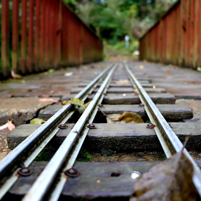 """""""On the tracks photography"""" stock image"""