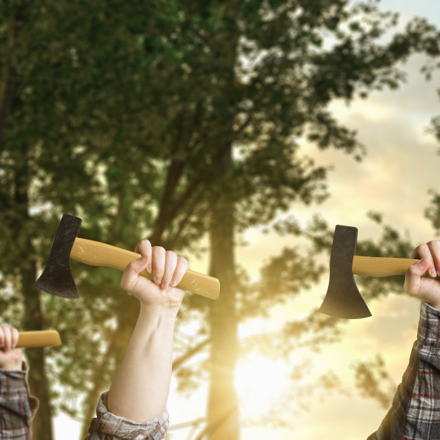"""""""hands of loggers rise up to strike for their workers rights in front of forest"""" stock image"""