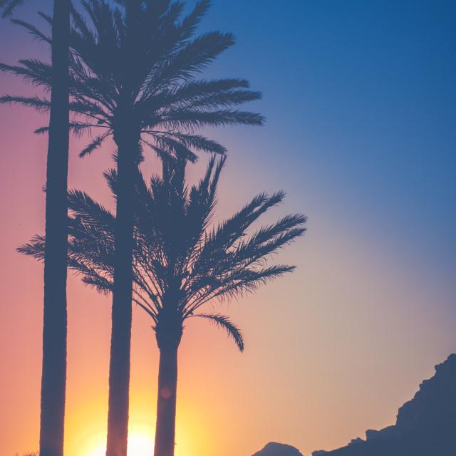 """""""Tropical Hawaii Sunset"""" stock image"""