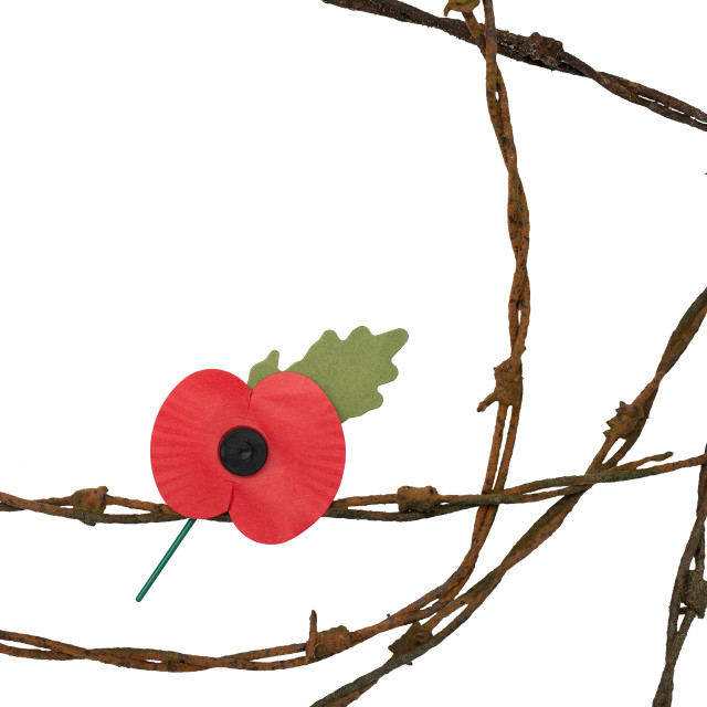 """""""Lest We Forget"""" stock image"""