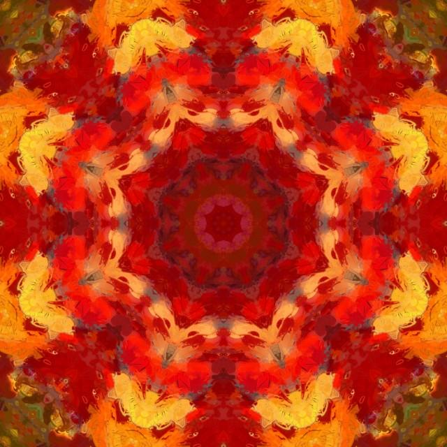"""""""Autumn Foliage Mandala"""" stock image"""