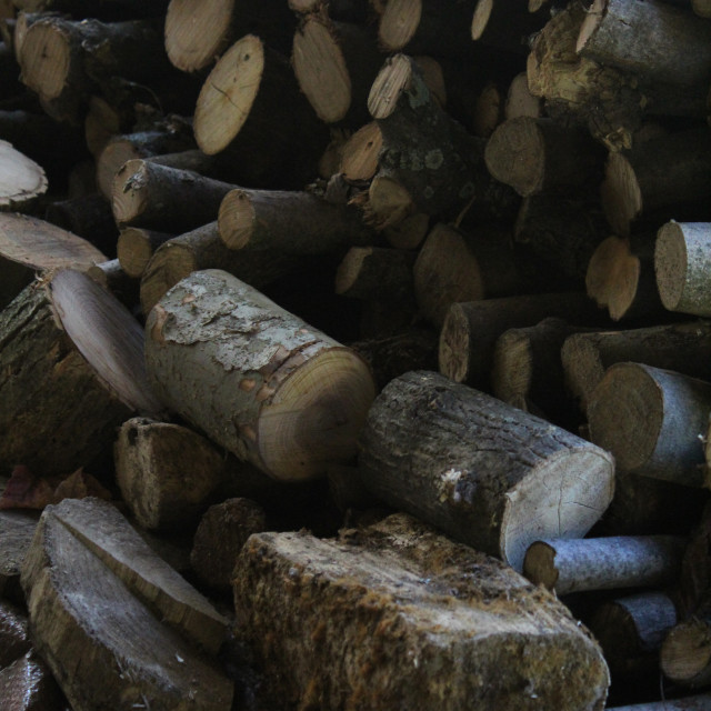 """""""pile of wood"""" stock image"""