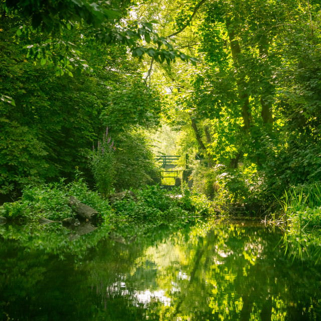 """The River Crane in West London, England"" stock image"