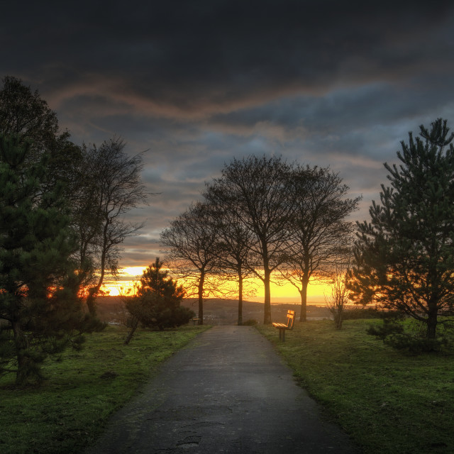 """Evening at Ravenhill park"" stock image"