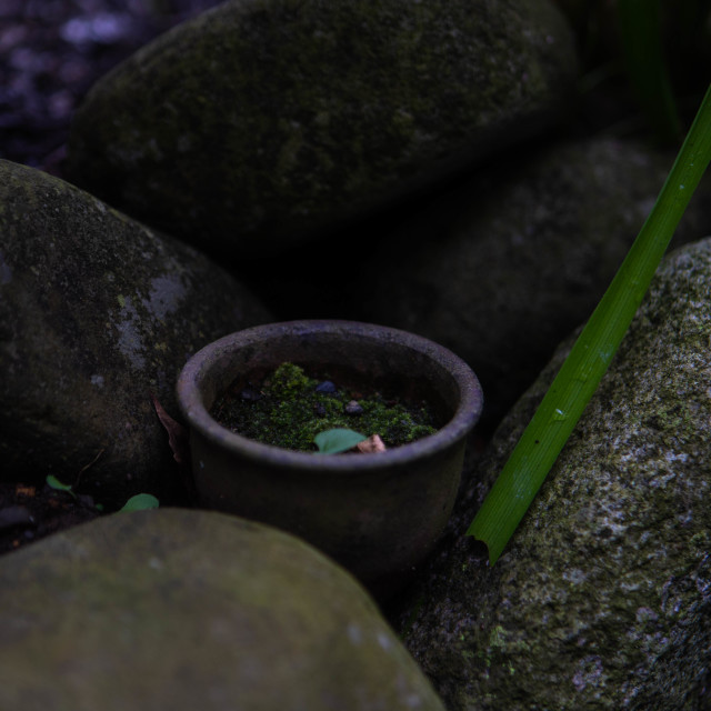 """Serene Japanese Bowl among Stones"" stock image"