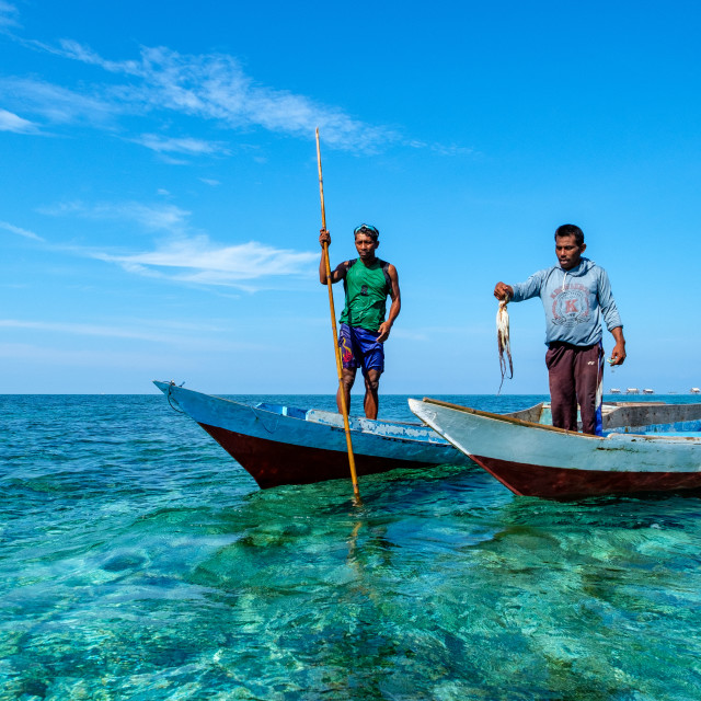 """Bajau Fishermen holding an octopus, Togian Islands, Indonesia."" stock image"