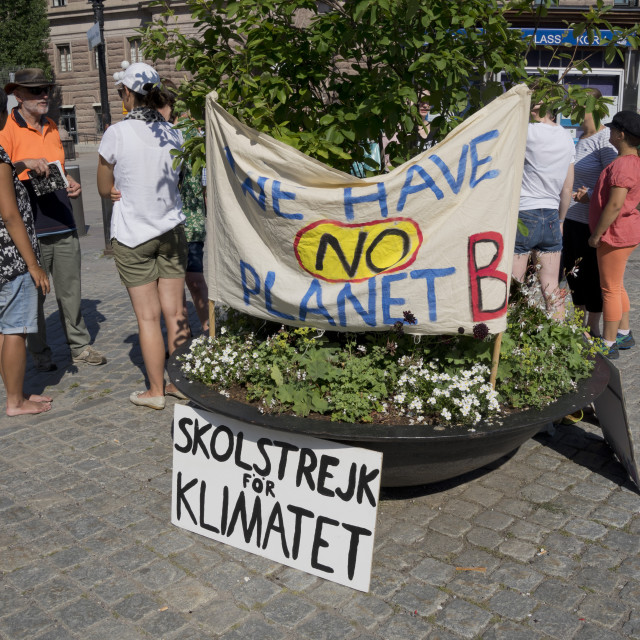 """Swedish environmental activists protesting outside the Swedish parliament in..."" stock image"